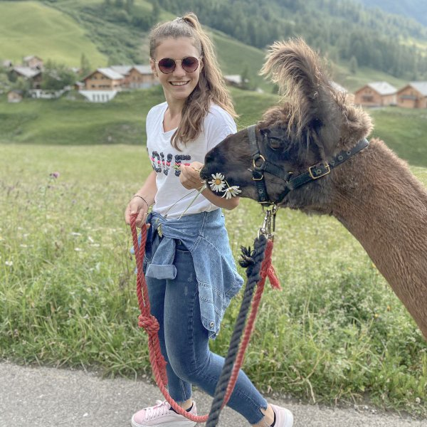 Trekking with llamas and alpacas in Liechtenstein